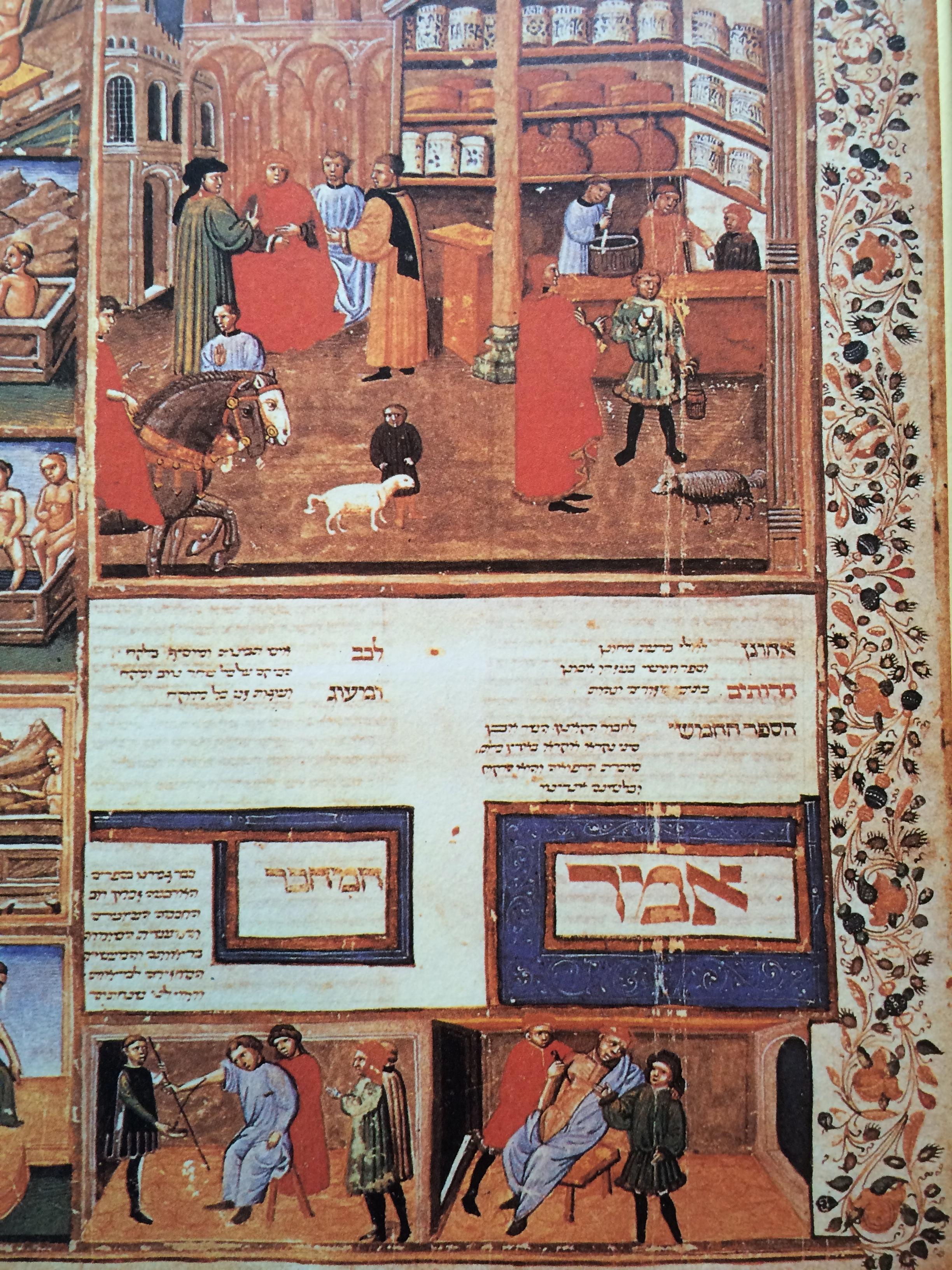 アヴィセンナ「医学典範」ヘブライ語写本