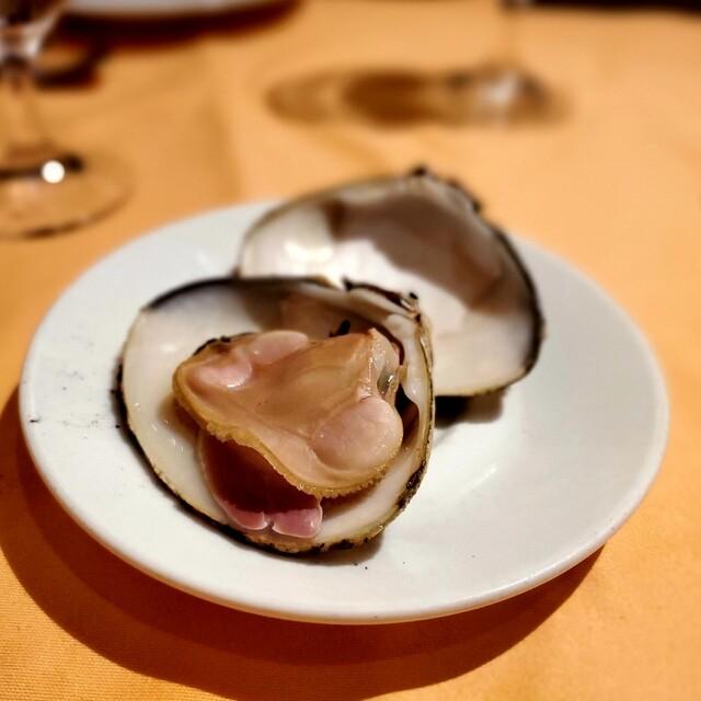 Cucina Italiana Piccolo Grande dish net